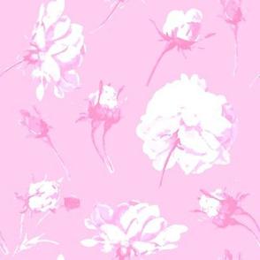 Elsie Watercolor Roses in sorbet