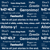 Doctor Who Quotes Medium