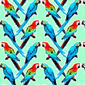 Parrot Kiss Neon Green