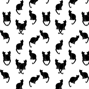 haunted black cats on white