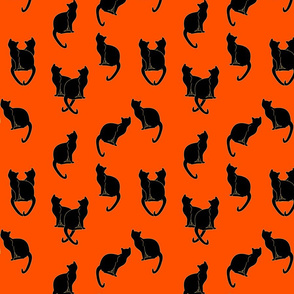 Haunted Black Cats on Orange