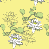 Water_Lily 232x3yellow