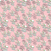 Water Lily 500x12pink
