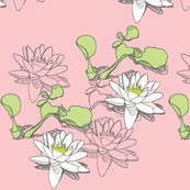 Water_Lily_232x3pink whC