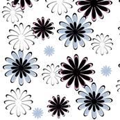 Daisies (White Background)