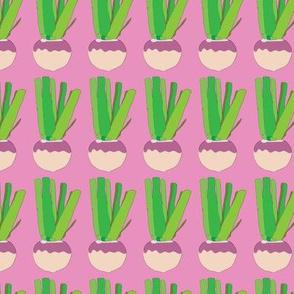 Turnips_MissChiff