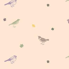 Little birds (pink tint)