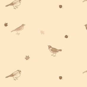 Little birds (Sepia)
