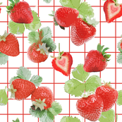 Strawberry Summer with red tartan