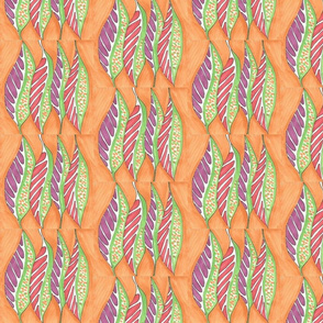 Feathers_on_Mango