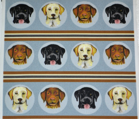 Labrador Colors Stripe