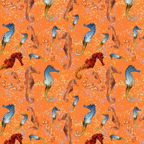 SEAHORSES BALLET ORANGE ANIMALS  NAUTICAL HIPPOCAMPUS SEA HORSE