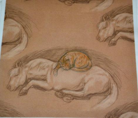 Cat and Pony Nap