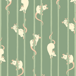 Rats in the Rigging (green)