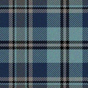 Trendy Blue Plaid 2
