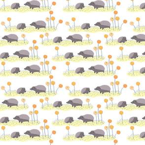 Hedgehogs_2_for_fabric__Tr_sk__Design_by__2015_Solvejg_J_Makaretz-01