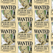 Zoro's wanted poster from One Piece