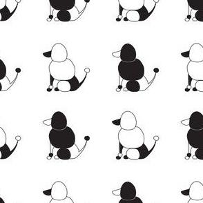 BooBoo Collective - Poodle yin yang 1