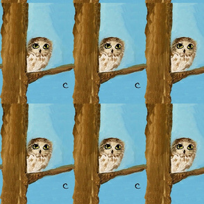 Owl by Clara
