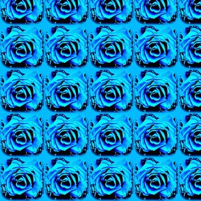 3 D Roses in Blue