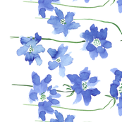 Scabiosa Watercolor Border Design