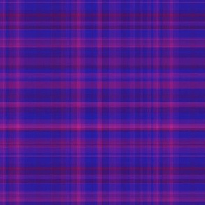 Berry Blue Plaid 2