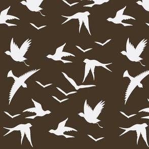 doves in brown