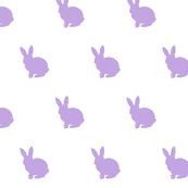 Lavender bunny solid
