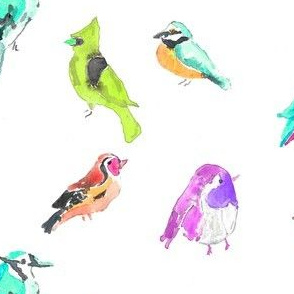 birds in pinks