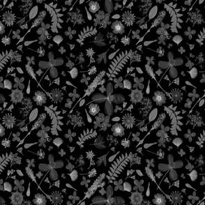 Shades of Grey Botanicals