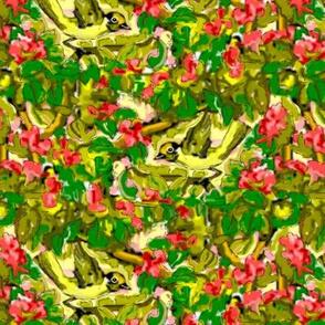 Warblers on Bougainvillea