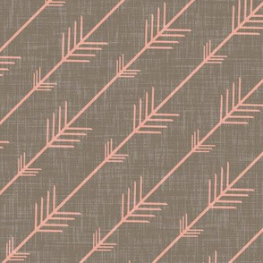 Flying Arrows in Coral