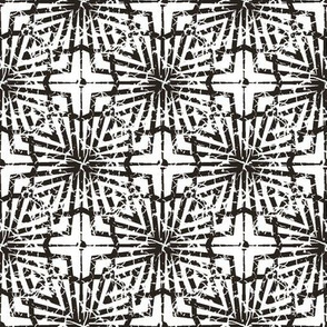 Crackled Black and White Abstract