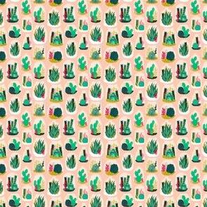 Terrarium // pink pastel cactus pattern cacti terrarium