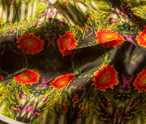 Multicolored flower