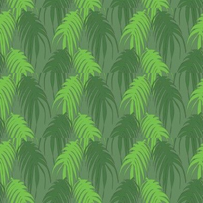 coords_animal_jungle