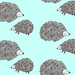 Let sleeping hedgehogs lie