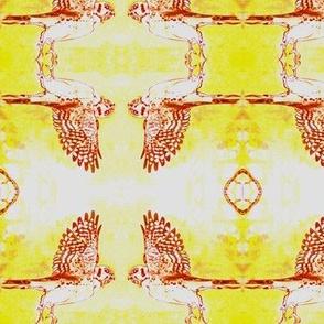 Kestral on Yellow
