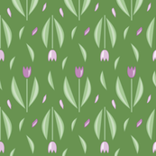 Graphic tulips Lilac