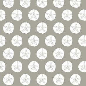 Sand Dollar MED white on grey 2015