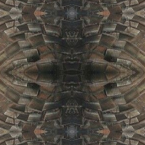turkeyfeathers