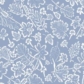 placid blue foliage