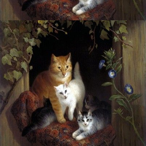 cats kittens pussy vines ivy morning glory glories flowers plants