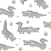 Alligators Crocodile Grey
