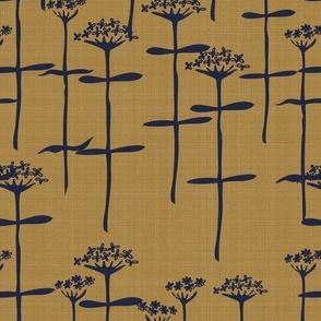 verbenabonariensis-mustard