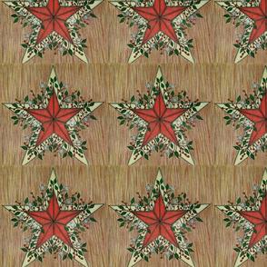 Rustic Christmas Stars
