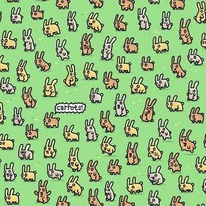 Cute bunny Rabbits