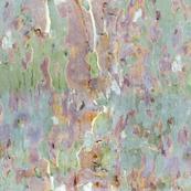 tree bark from France