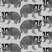 Badger Grey n Black
