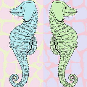 Madison Seahorse